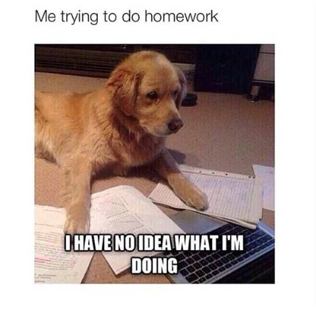 Fucking homework - meme