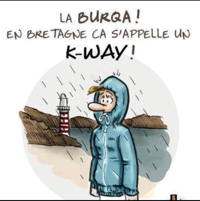 vive la pluie - meme