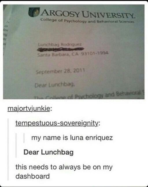 Dear Lunchbag - meme