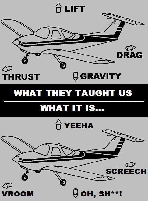 Flight 101 - meme