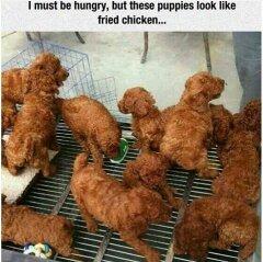 Like si lo viste como pollo frito - meme