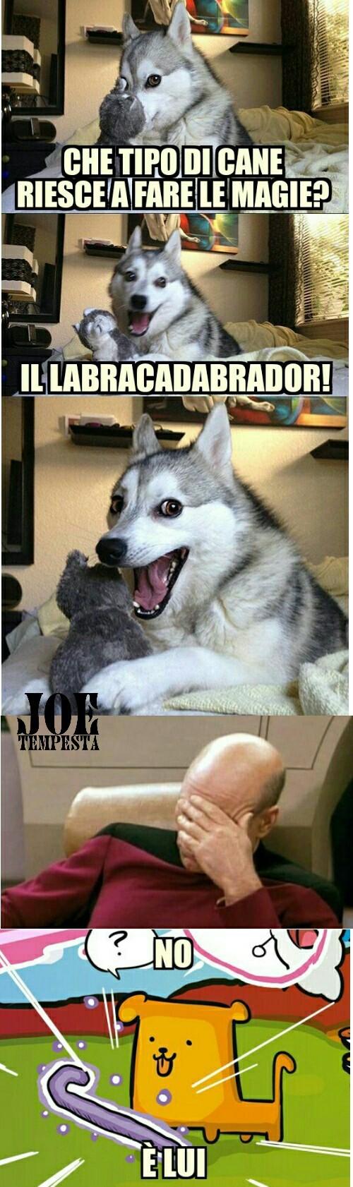 Quisquilie e pinzillacchere - meme