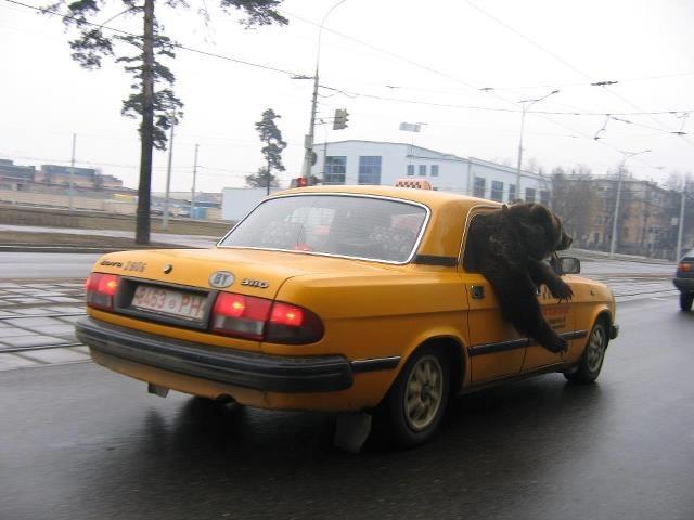 Pendant ce temps là, en Russie... - meme