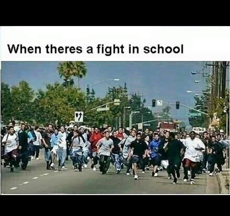 fights - meme