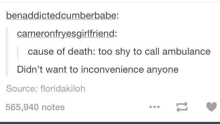 dont be shy - meme