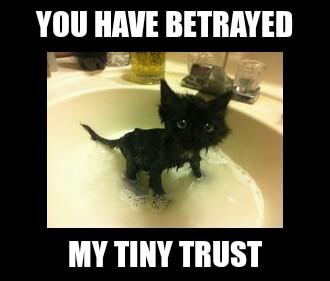 The Best Utter Betrayal Memes Memedroid
