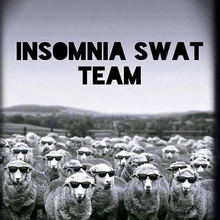 Insomnia swat team - meme