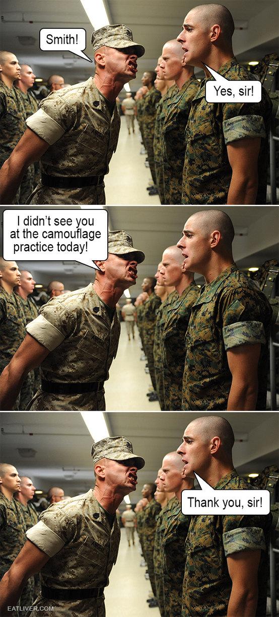 Camouflage - meme