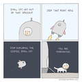 Misbehaving Small Cat
