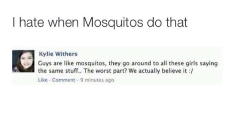 damn mosquitos - meme
