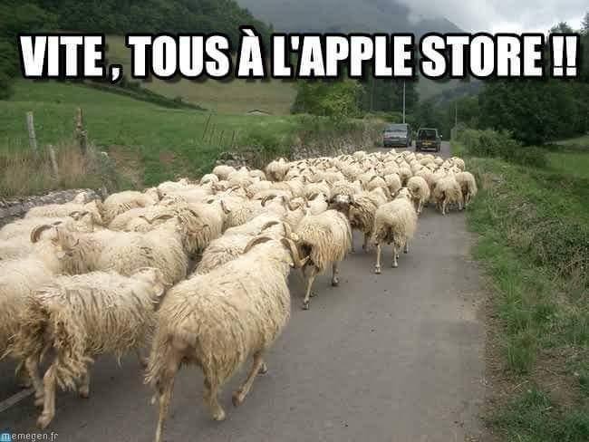 Les fans de Apple, moutons de merde. :o) - meme