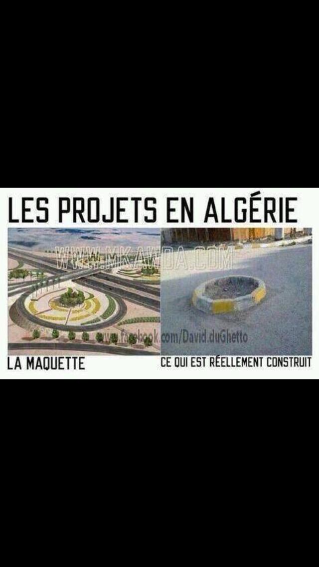 Projets en algerie - meme