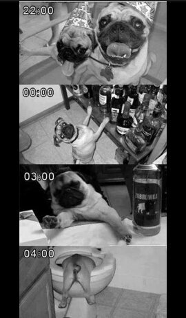 #Puglife#Thuglife - meme