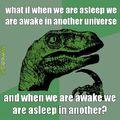 parallel universe?