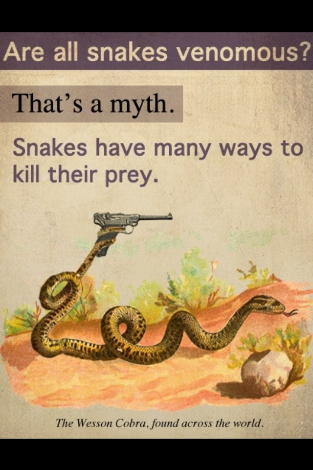 Killer snakes.. - meme