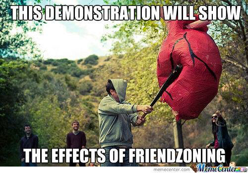 Welcome to the friend zone. NOOOOO - meme