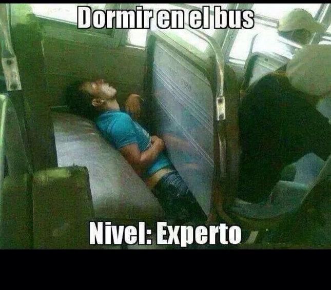 Autobus - meme