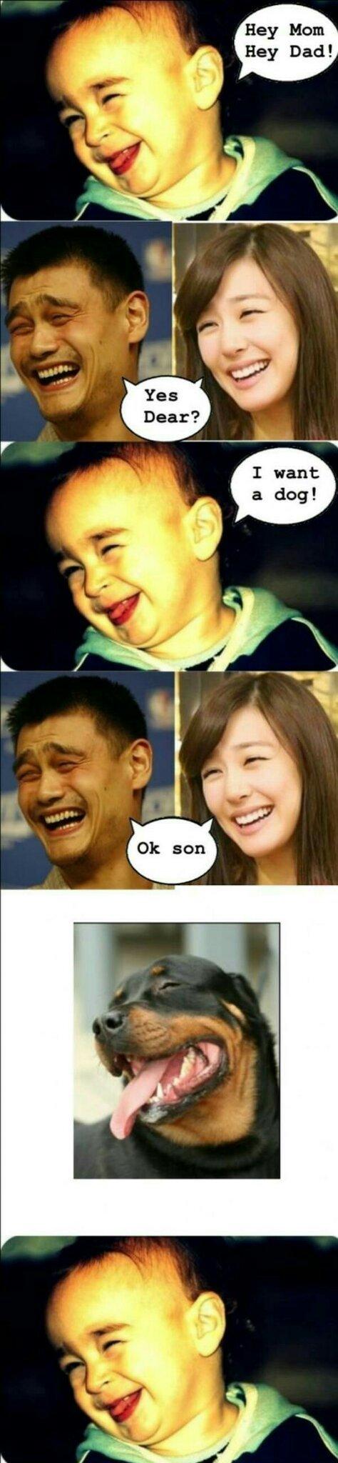 La famille yao ming - meme