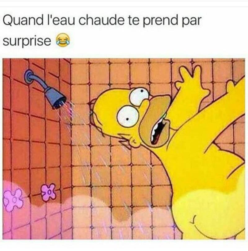 Simpson - meme