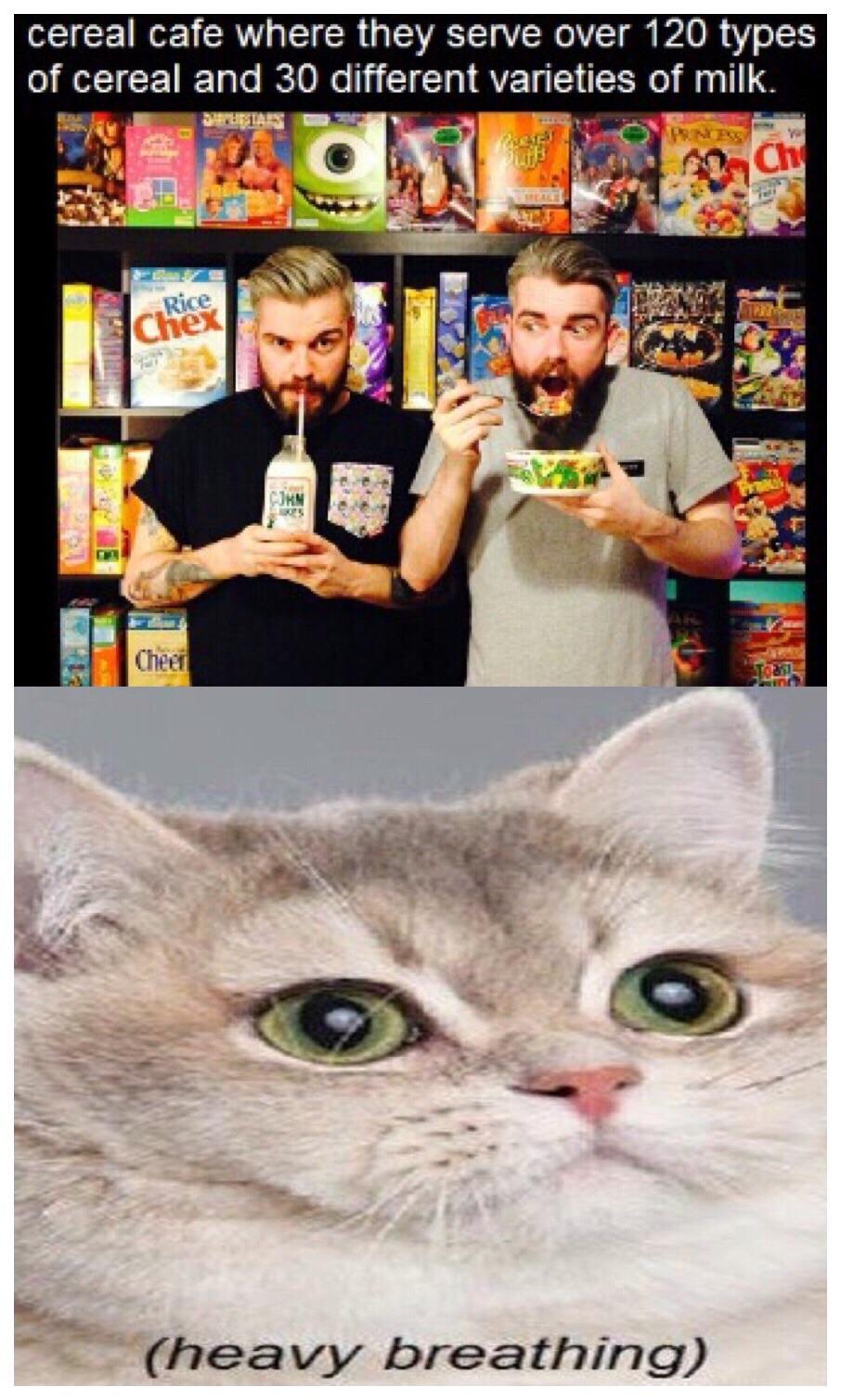 Milk was a bad choice - meme