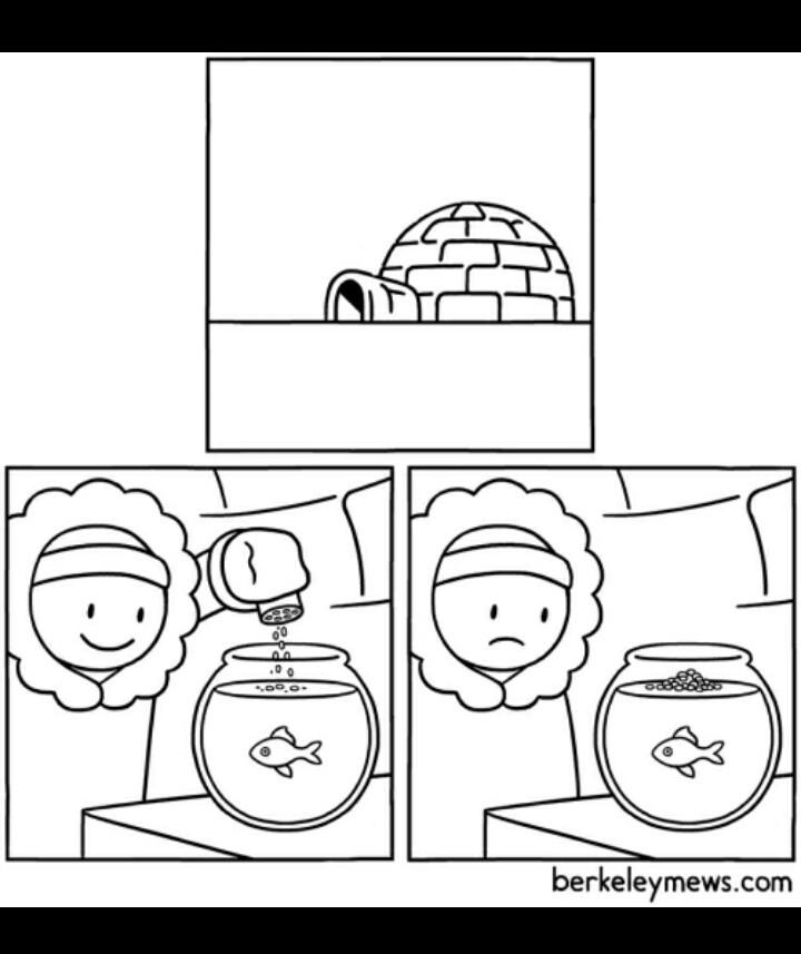 este iglú es un lokillo - meme