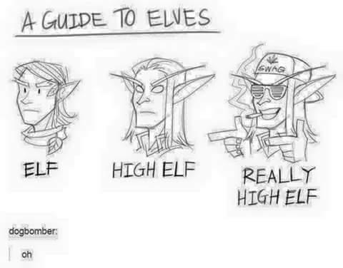 Um guia para elfos - meme
