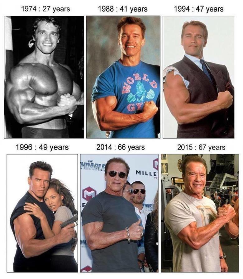 Best role model is Arnie. - meme