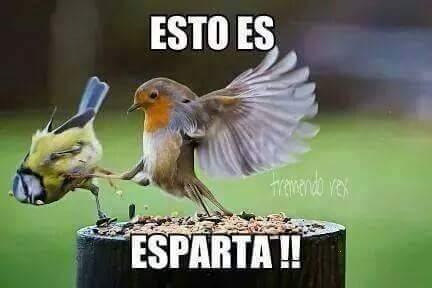 Espartaaaa!!!!!! [sigan para mas^^] - meme