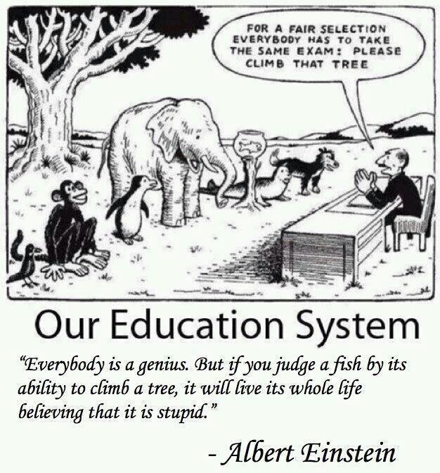 Our education system sucks - meme
