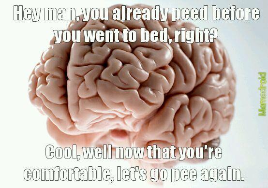 My brain is a bastard. - meme