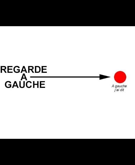 Gauche - meme