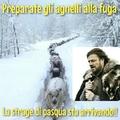 Una fuga epica sui monti innevati, per salvare la vita ai piccoli agnellini!!