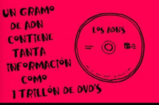 ESTOY HECHA DE DVD,S!!!! :v - meme