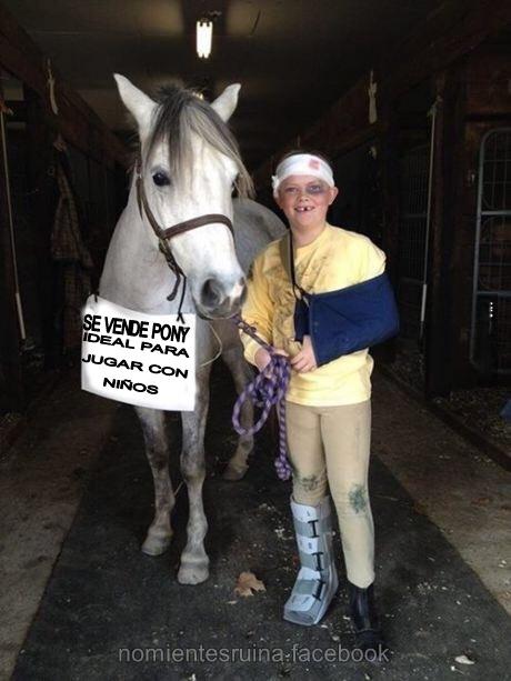 Se vende pony - meme