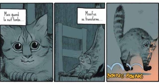 Boing boing, c'est moi le chat qui hante cette maison. - meme