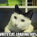 Chargement du chat blanc a 90%, ou chargement du chat noir a 10% ?