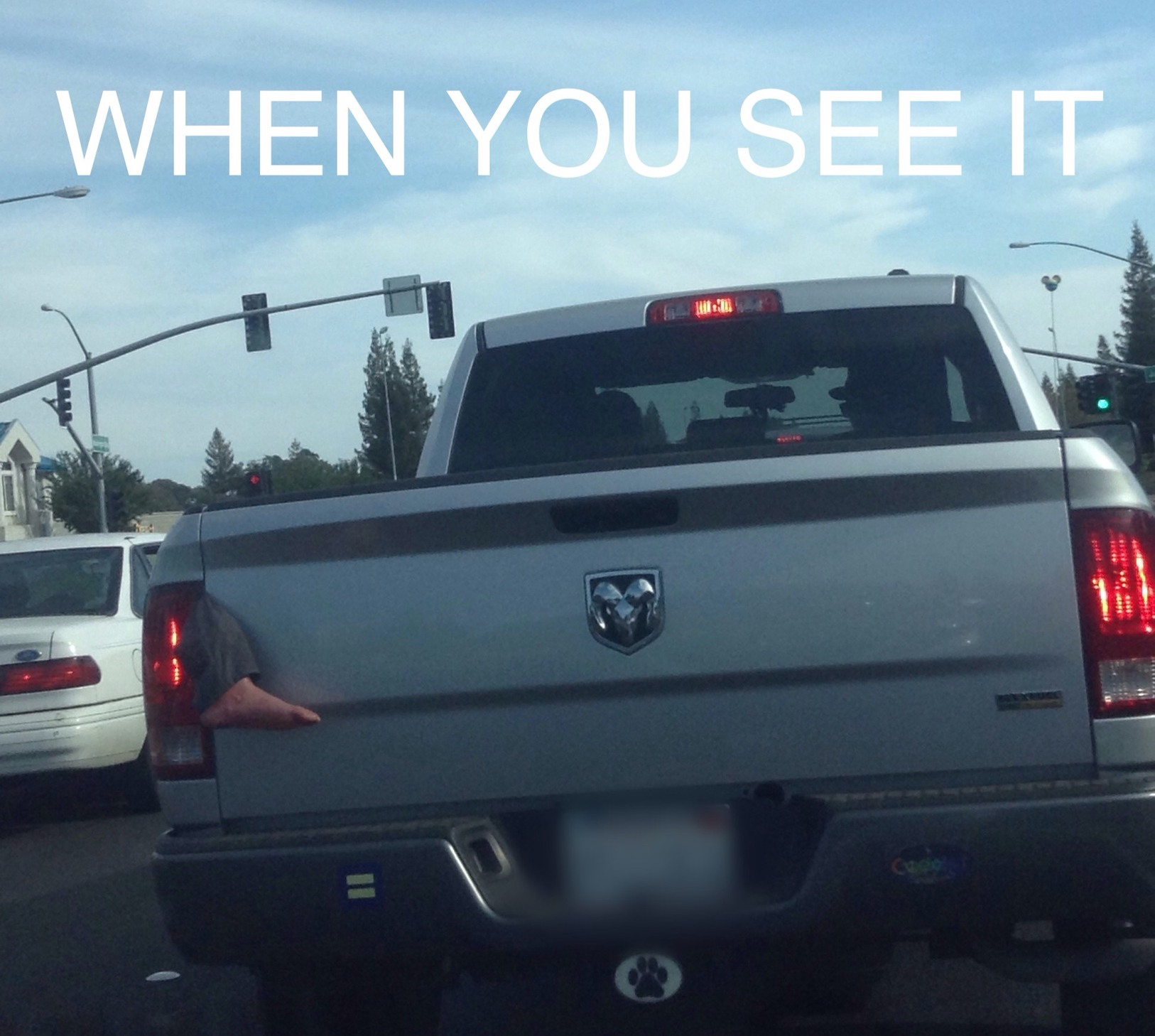 This guy was literally driving around like this. - meme