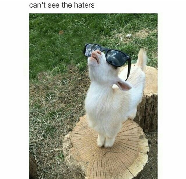 Baah Baah motherfucker - meme