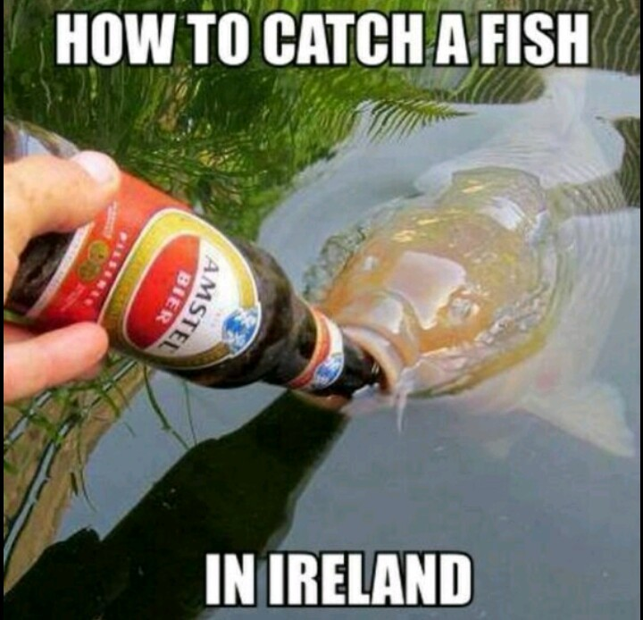 Catching fish by hand since ...... - meme