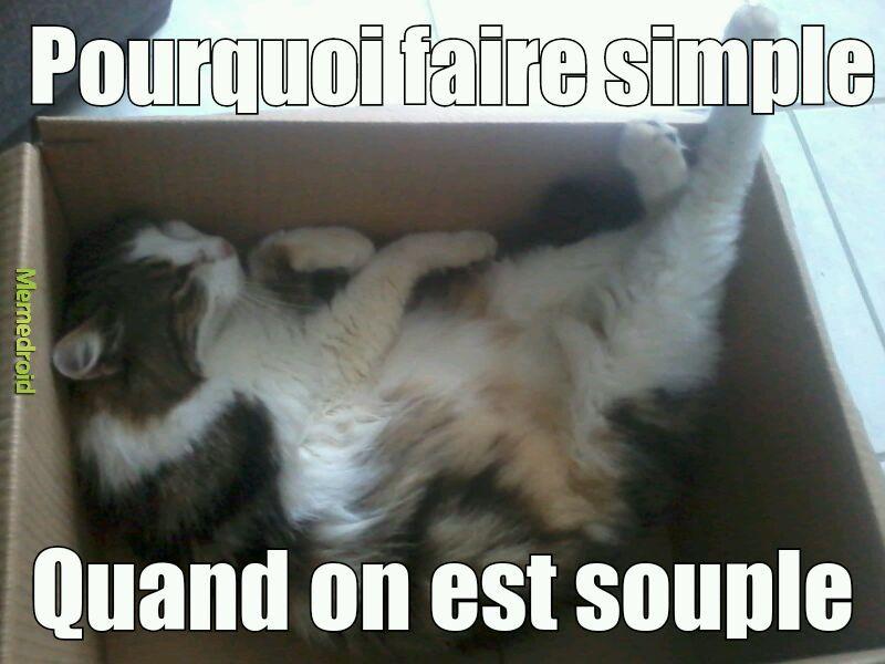 Souplesse - meme