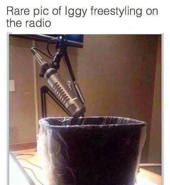Iggy is trash - meme