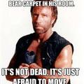 Chuck Norris is bad ass
