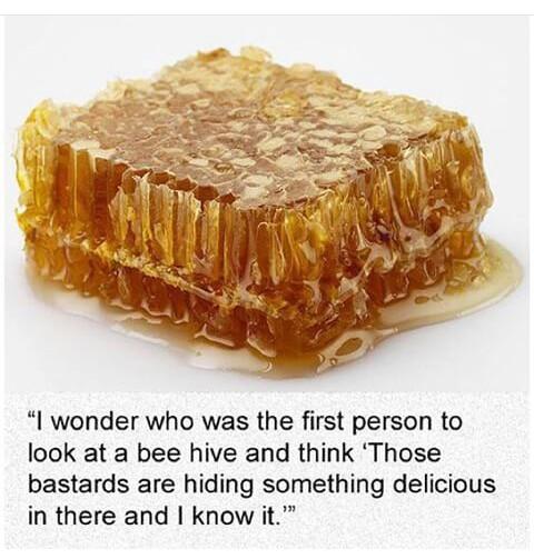 Honey, - meme