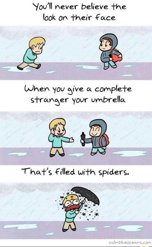Spiders.... - meme
