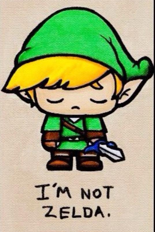 Link pas Zelda ,ok c'est rentrez? - meme