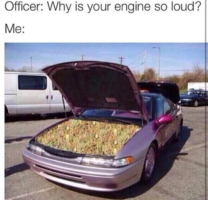 Dat Loud. - meme