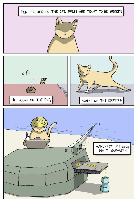 Badass cat - meme