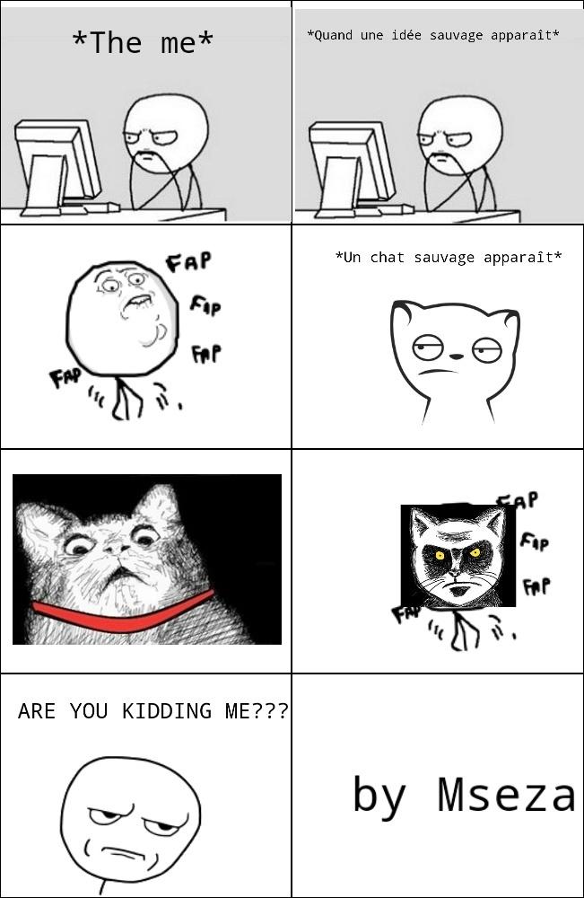 Fap fap fap cat - meme
