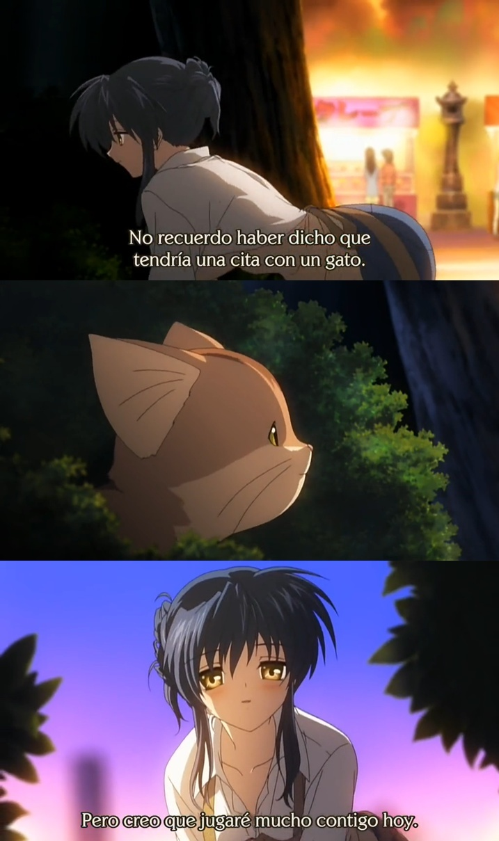 El neko sapbeeee! 7u7 - meme