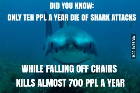 Sharks n' chairs - meme